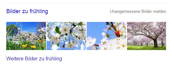 bilder-seo-universal-search