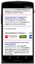 app-essential rules-SERP